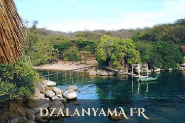 Dazalanyama Forest Reserve