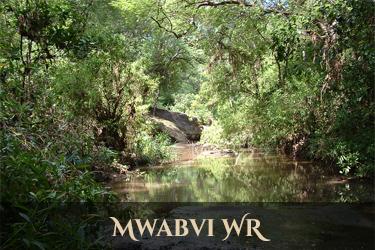 Mwabvi Wildlife Reserve