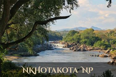 Nkhotakota National Park