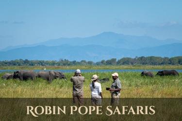 Robin Pope Safaris